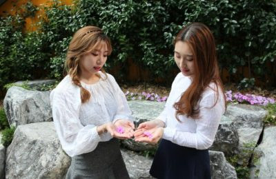 Cherry Factory Members Profile (Age, Bio, Wiki, Facts & More)